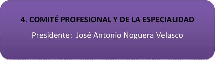 4. comite_profesional