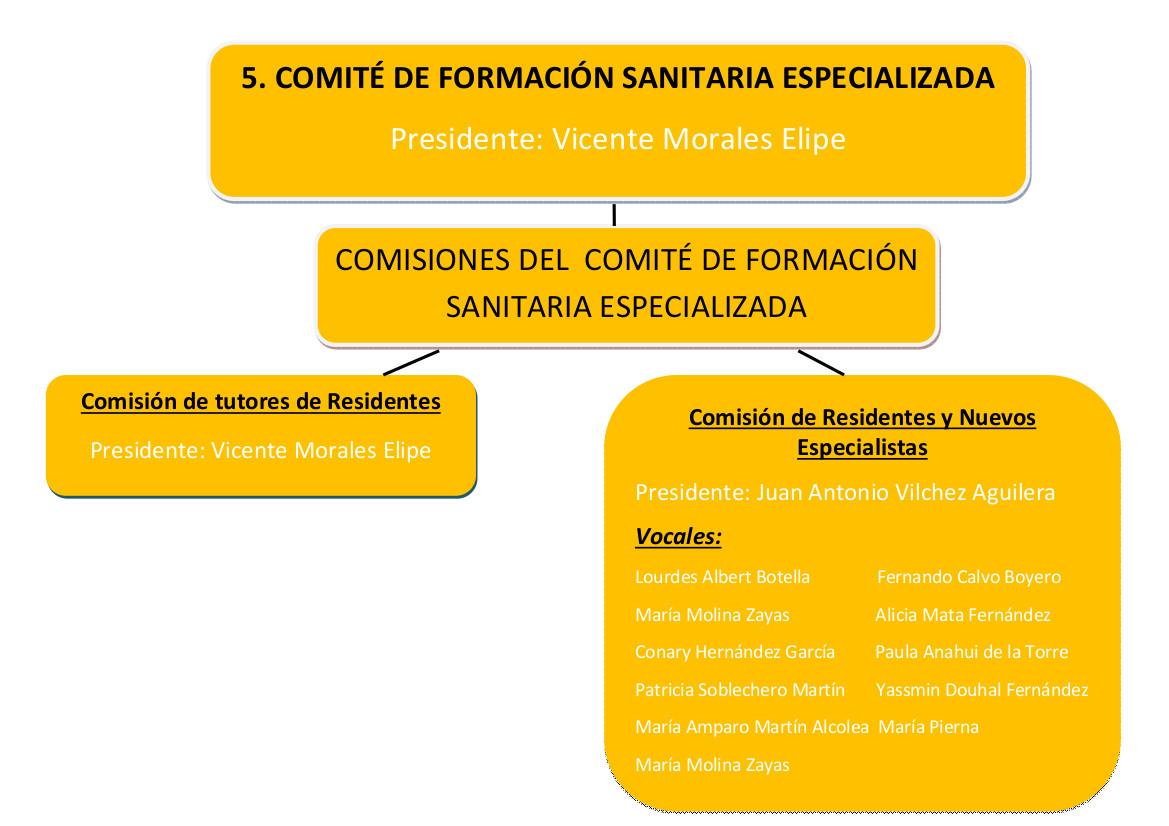 5. comite_formacion_sanitaria rect