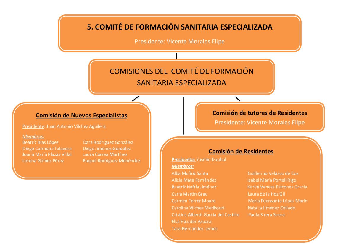 5. comite_formacion_sanitaria_modf_v4