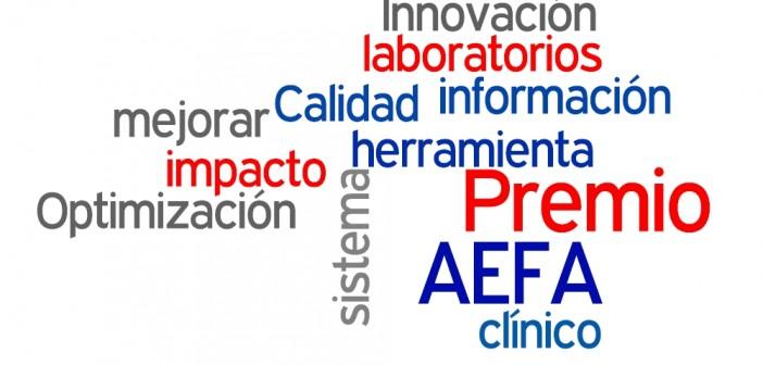 VI Premio AEFA a la Calidad e Innovación. Convocatoria 2014